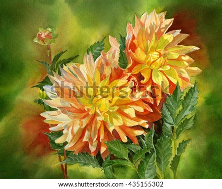 Gold and Orange Dahlias with Background, watercolor hand painted flowers with background in colors of orange, green, yellow green and gold.