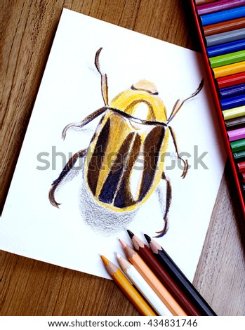 Gold Beetle, Color pencil. hand drawn,3D - stock photo