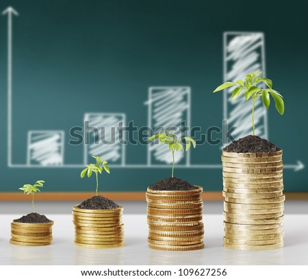 gold coins and plant them - stock photo