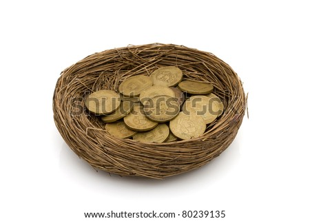 Gold coins in a nest isolated on white, Saving for your retirement - stock photo