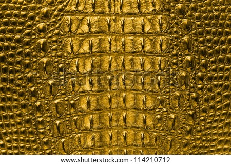 Gold Crocodile bone skin texture background. - stock photo