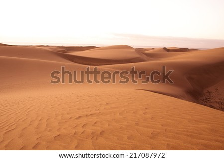 Gold desert in sunset. Canary Islands, Canaries. Grand Canary. Maspalomas - stock photo
