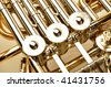 Gold French Horn - stock photo