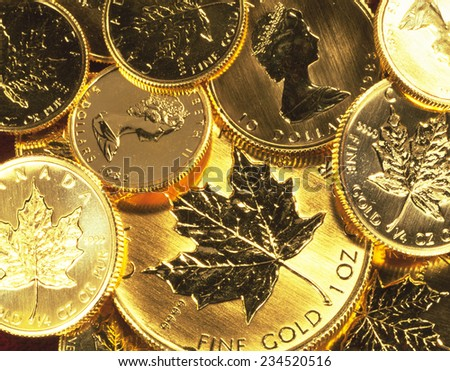 Gold Maple Leaf - stock photo