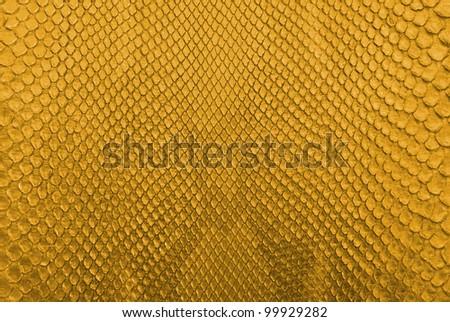 Gold python snake skin texture background. - stock photo
