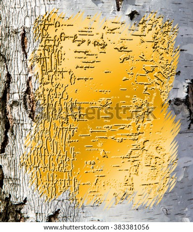 Gold surface surrounded by birch frame - stock photo