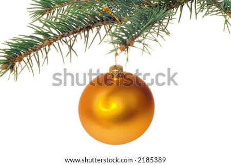 Gold xmas ball hanging on pine twig isolated on white background