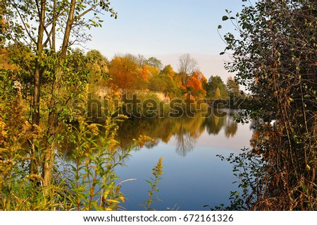 Golden autumn on a forest lake
