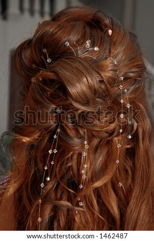 golden-brown curly mane - stock photo