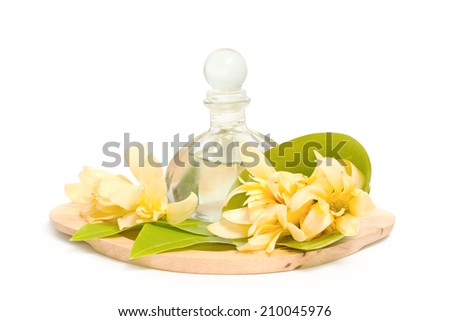 Golden champaka essential oil with champaka flower for spa aromatherapy - stock photo