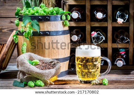 Golden color of beer and fresh green hops - stock photo