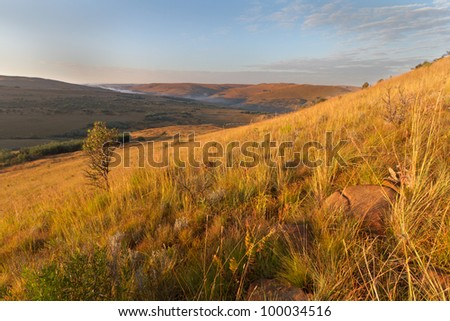 Golden dawn over the hills of the Mpumalanga Highlands Meander in South Africa