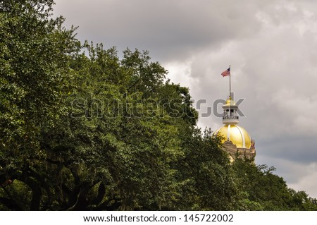 golden dome of savannah city hall - stock photo