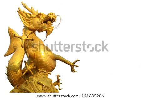 Golden Dragon fish on isolate white background. - stock photo