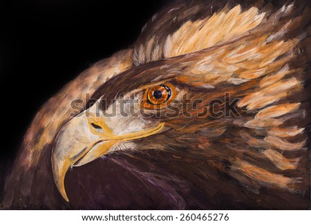 Golden eagle close up looking to the left - stock photo