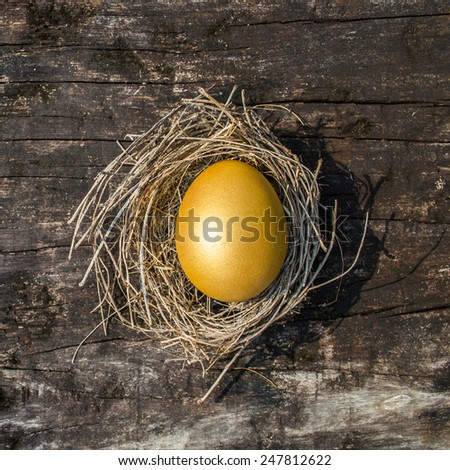 Golden egg in a nest on an old wooden background: A golden egg opportunity - stock photo