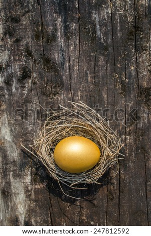 Golden egg in a nest on wooden background with empty space for adding text: A golden egg opportunity - stock photo