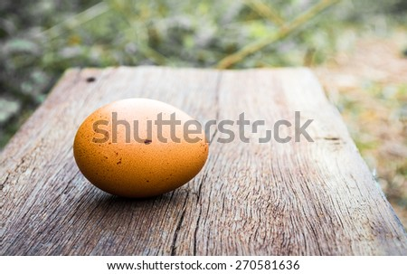 golden egg in nest on easter day with vintage color tone