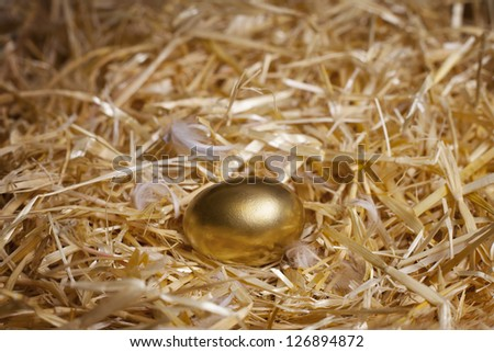 Golden egg laid by a hen. Macro studio shot. - stock photo