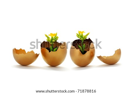 Golden egg, new life concept , force of nature and easter time - stock photo
