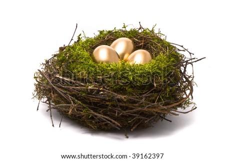 Golden eggs in a nest - stock photo