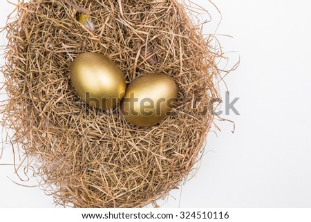 golden eggs in the nest isolated on white