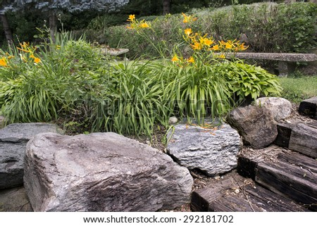 golden flowers and boulders - stock photo