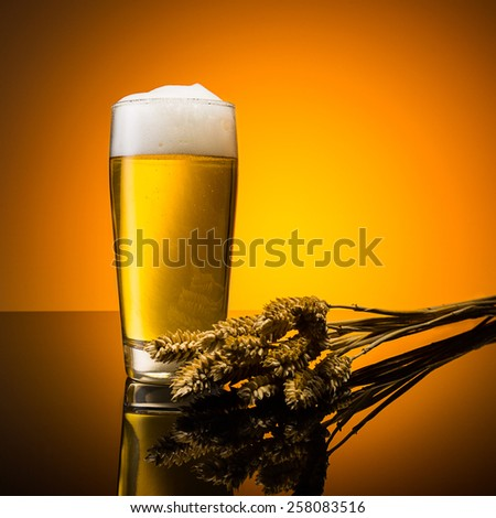 golden german beer in a glass with corn ears - stock photo