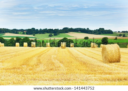 Golden hay bales in French countryside - stock photo