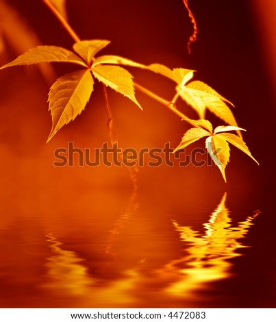 Golden leaves reflected in rendered water - stock photo
