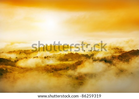 Golden light and misty over hill - stock photo