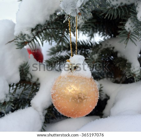 Golden New Year ball on live fir-tree with frost and snow