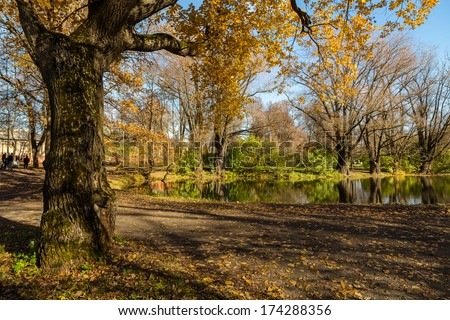 Golden oaks and pond in Bolshoe Boldino, Russia