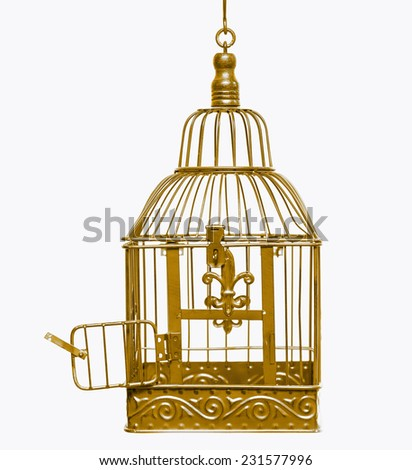 Golden open bird cage - stock photo