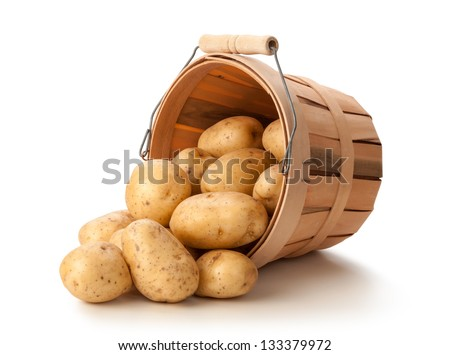 Golden Potatoes in a Basket isolated on a white background. - stock photo