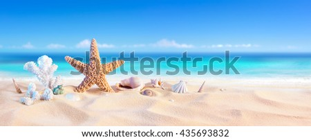 Golden Sand With Seashell And Starfish - Tropical Seashore  - stock photo
