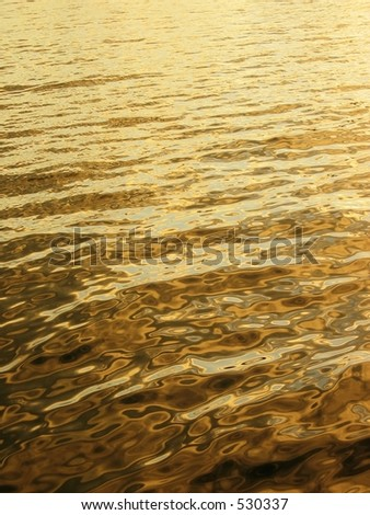 Golden sea - stock photo