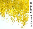 Golden Shower tree - stock photo
