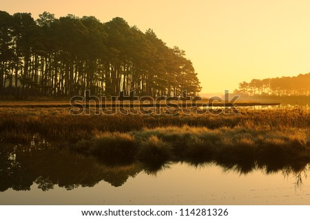 Golden Sunrise at Salt Marsh - Chincoteague National Wildlife Refuge, Virginia - stock photo