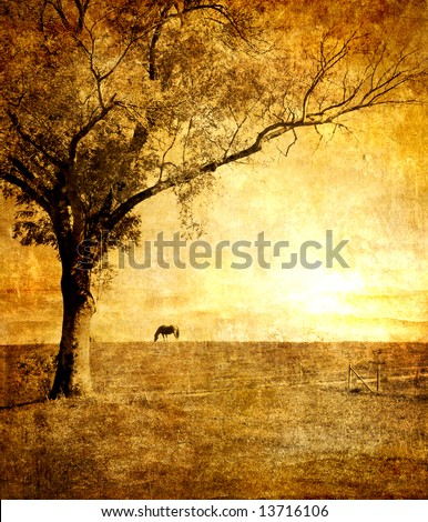 golden sunset - artistic toned picture - stock photo