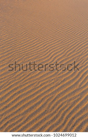 Golden wavy sand texture pattern structure, lit by morning sun. Sandy dunes background.