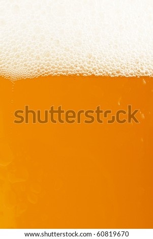 golden wheat beer closeup with white crest - stock photo
