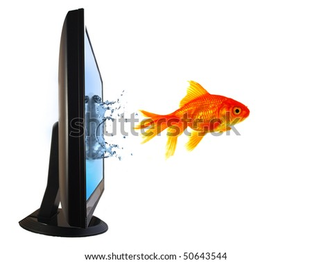 Goldfish Flying Out of Computer Monitor - stock photo
