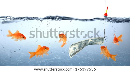 goldfish in danger - dollar as bait - concept deception  - stock photo