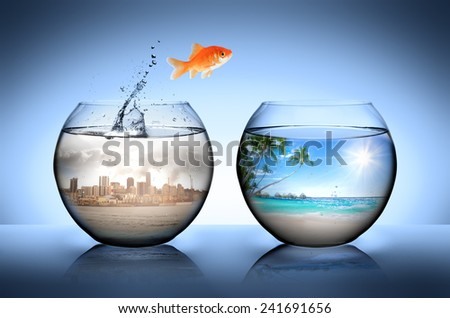 goldfish jumping away from city for go to tropical beach - stock photo