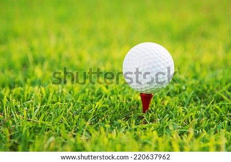 golf ball and tee on green grass - stock photo