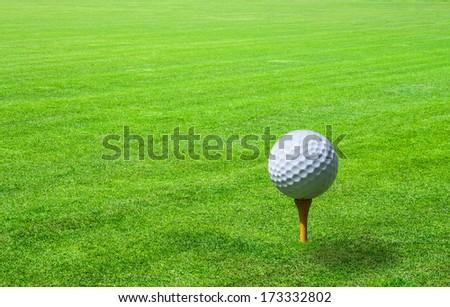 golf ball in green grass - stock photo
