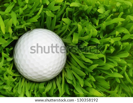 Golf ball in the green grass - stock photo