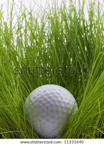 Golf ball in the rough - stock photo
