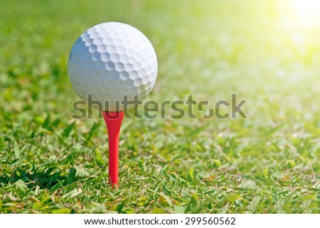 Golf ball on a real golf course green - stock photo